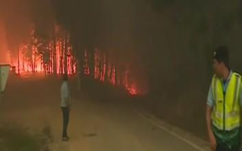 Στους 24 οι νεκροί από την πυρκαγιά στην Πορτογαλία