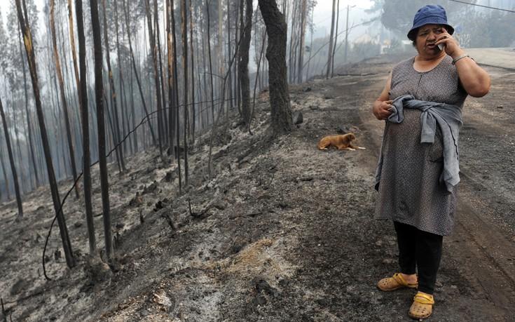 «Κανένα Καναντέρ δεν συνετρίβη κατά την κατάσβεση των πυρκαγιών»