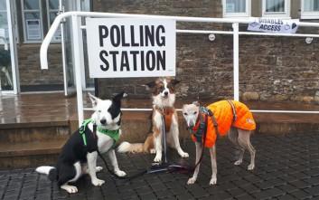 Οι απρόσμενοι σταρ των βρετανικών εκλογών είναι τα… σκυλιά