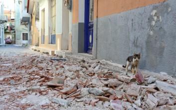 Παραδόθηκαν οι αρχιτεκτονικές μελέτες για την ανακατασκευή σχολικών κτιρίων στη Λέσβο