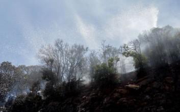 Αραχωβίτης: Οι συχνές φωτιές στη Μάνη δεν συνιστούν σύμπτωση