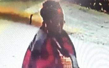 Μυστηριώδης γυναίκα ψέκασε αρχαία αντικείμενα στη Βεργίνα και προκάλεσε καταστροφές