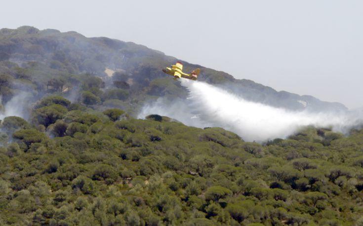 Φωτιά σε πευκόφυτη περιοχή στα Χανιά