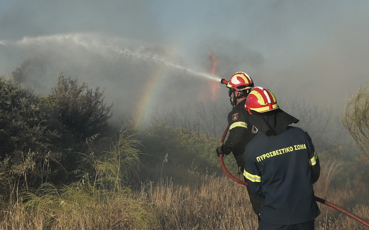 Μάχη των πυροσβεστικών δυνάμεων με τις φλόγες σε Ανάβυσσο και Σπέτσες