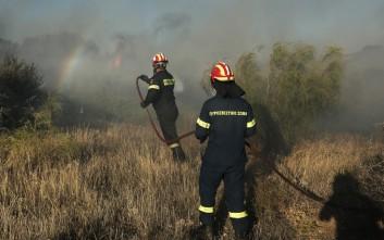 Χίλια στρέμματα έκαψε η πυρκαγιά στη Χαλκιδική