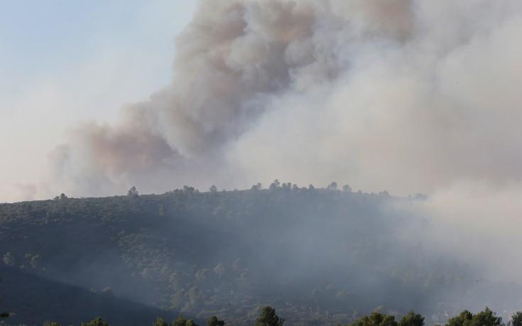 Υπό έλεγχο τέθηκε η μεγάλη πυρκαγιά στην περιοχή μεταξύ Γέρας και Πλωμαρίου