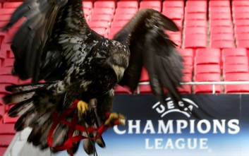 Benfica's mascot Victoria, the eagle, practices her landing at the Luz stadium Monday, Feb. 20, 2006, in Lisbon, Portugal.  Benfica will face Liverpool in Tuesday's Champions League Round of 16 soccer match. (AP Photo/Steven Governo)