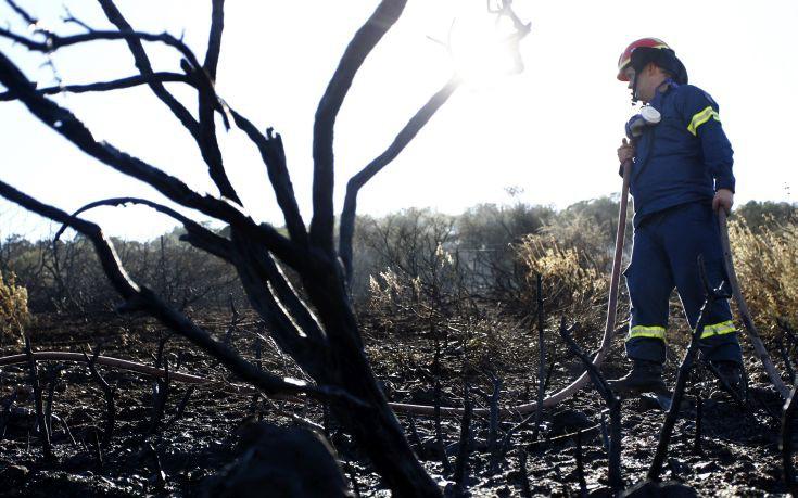 Παραμένει σε εξέλιξη η φωτιά στη Ζάκυνθο