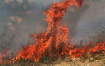 Μεγάλη πυρκαγιά κοντά στο Ασβεστοχώρι Ιωαννίνων