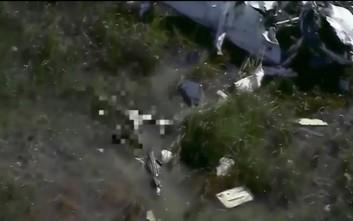 Αλιγάτορας καταβροχθίζει το σώμα πιλότου από αεροπλάνο που κατέπεσε