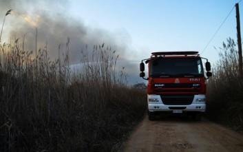Στάχτη έγιναν 8 στρέμματα δασικής-αγροτικής περιοχής στο Οροπέδιο Λασιθίου