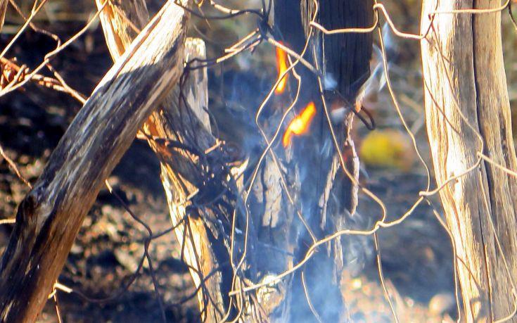 Φωτιά στην Παλιά Καβάλα