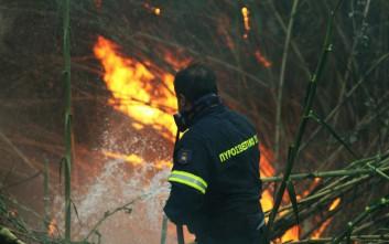 «Δεν απειλείται από την φωτιά το χωριό Πεύκο Καλαβρύτων»