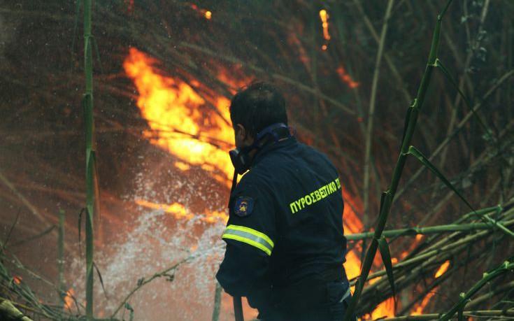 Σε εξέλιξη οι πυρκαγιές σε Ηλεία, Κορινθία, Κρήτη και Αυλώνα