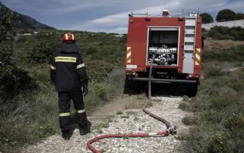 Δασική πυρκαγιά στην περιοχή Σαντομέρι Αχαΐας