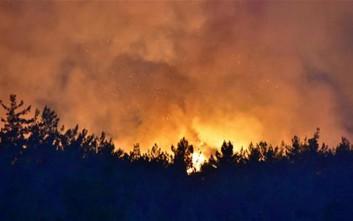 Καίγονται τα δάση γύρω από την Σμύρνη