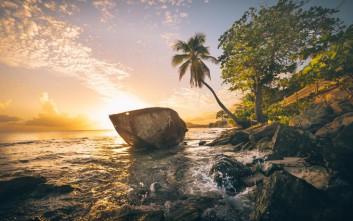 Βιέκες, το νησί με τη θάλασσα που φωσφορίζει