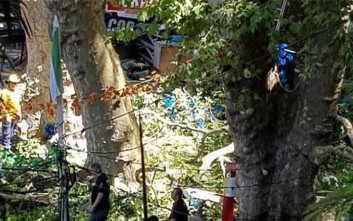 Τουλάχιστον δέκα προσκυνητές νεκροί από πτώση δένδρου στην Πορτογαλία