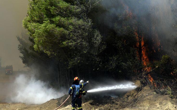 Σε εξέλιξη φωτιά σε δασική έκταση στην Κύμη