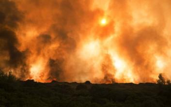 «Δεν κάηκαν μειονοτικά σπίτια από τη φωτιά στη νότια Αλβανία»
