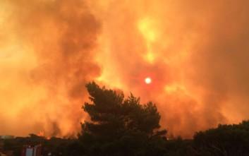 Φωτιά ξέσπασε τα ξημερώματα στη Θάσο