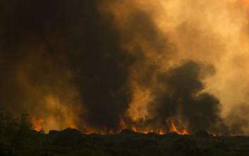 Αποστόλου: Πρέπει να σβήσουμε άμεσα τη φωτιά στα Κύθηρα
