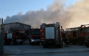 Τρέχουν για φωτιές στη Δυτική Λοκρίδα οι πυροσβέστες