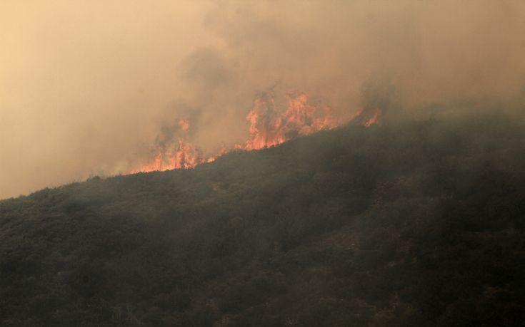 Υψηλός κίνδυνος πυρκαγιάς σε Δωδεκάνησα και Σάμο