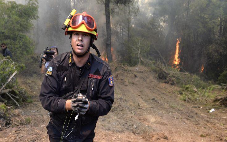 Πυροσβέστης σώζει ένα κοτσύφι από την πύρινη λαίλαπα