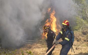 Φωτιά σε ξερά χόρτα στην Εγνατία Οδό
