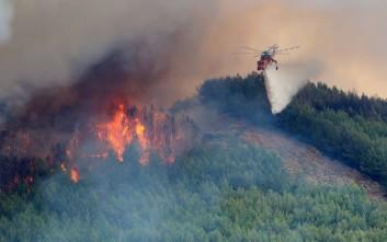 Δήμαρχος Θάσου: Έχουμε το «πάνω χέρι» με τη φωτιά