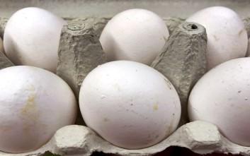 Παρτίδα μολυσμένων αυγών εντοπίστηκε και στην Ισπανία