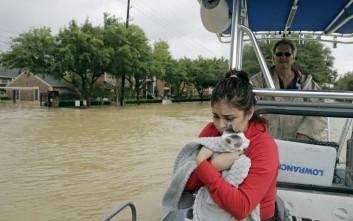 Κουβαλούν στις αγκαλιές τους τα ζώα για να τα σώσουν από τον τυφώνα