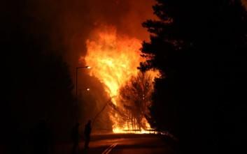 Η δραματική μάχη με τις φλόγες στην Αττική σε τρία βίντεο