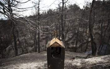 Δέκα φωτογραφίες του Associated Press από την πυρκαγιά στην Αττική