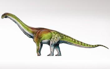 Το μεγαλύτερο ζώο του πλανήτη ήταν ο δεινόσαυρος Παταγοτιτάν