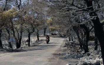Τα Κύθηρα μετρούν πληγές, στάχτη 20.000 στρέμματα