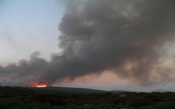 Το τελευταίο 24ωρο εκδηλώθηκαν 49 δασικές πυρκαγιές