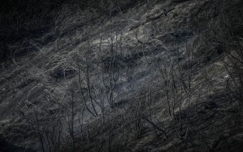 Σε ύφεση και οι τρεις πυρκαγιές στην Κέρκυρα