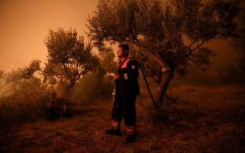 Νέα δασική πυρκαγιά στην Κεφαλονιά