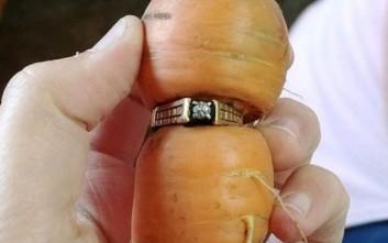 Δαχτυλίδι χαμένο 13 χρόνια ανακαλύφθηκε σφηνωμένο σε ένα καρότο