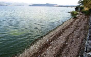 «Στέγνωσε» η λίμνη των Ιωαννίνων