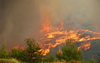 Συνεχίζεται η σκληρή μάχη με τη φωτιά στην Αττική