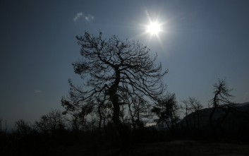 Χωρίς ενεργά μέτωπα η καταστροφική πυρκαγιά στην Αττική