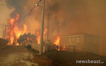 Οδηγίες της περιφέρειας Αττικής για τους πυρόπληκτους στον Ωρωπό