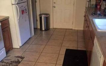 Μπορείτε να εντοπίσετε το σκύλο στη φωτογραφία;