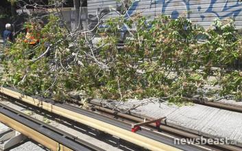 Καθυστερήσεις στον ηλεκτρικό, έπεσαν δέντρα στον σταθμό του Ταύρου