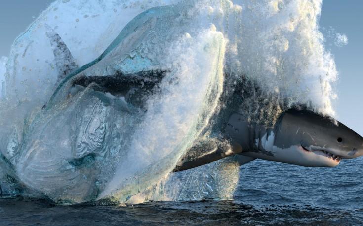 Τα πραγματικά «Σαγόνια του Καρχαρία»