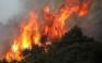 Ολονύχτια μάχη των πυροσβεστών στην πυρκαγιά της Κασσάνδρας