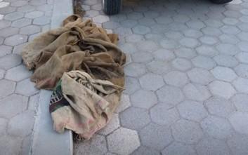 Tι εντόπισαν θηροφύλακες στο σπίτι κυνηγού στην Κρήτη
